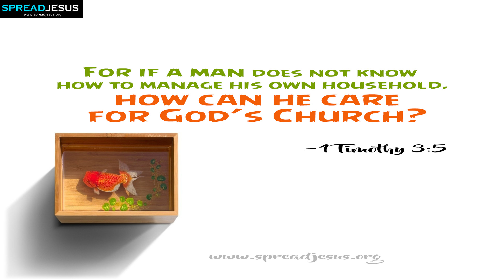Care for God's Church  1 Timothy 3:5 Bible Quotes HD Wallpapers