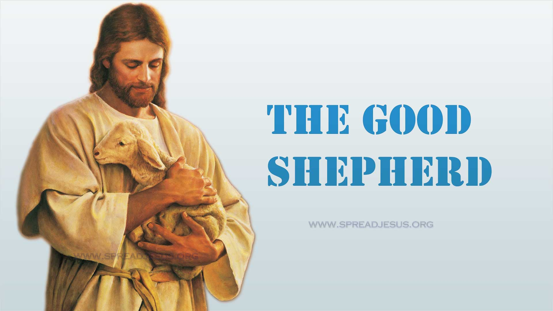 The Good Shepherd1:HD wallpapers