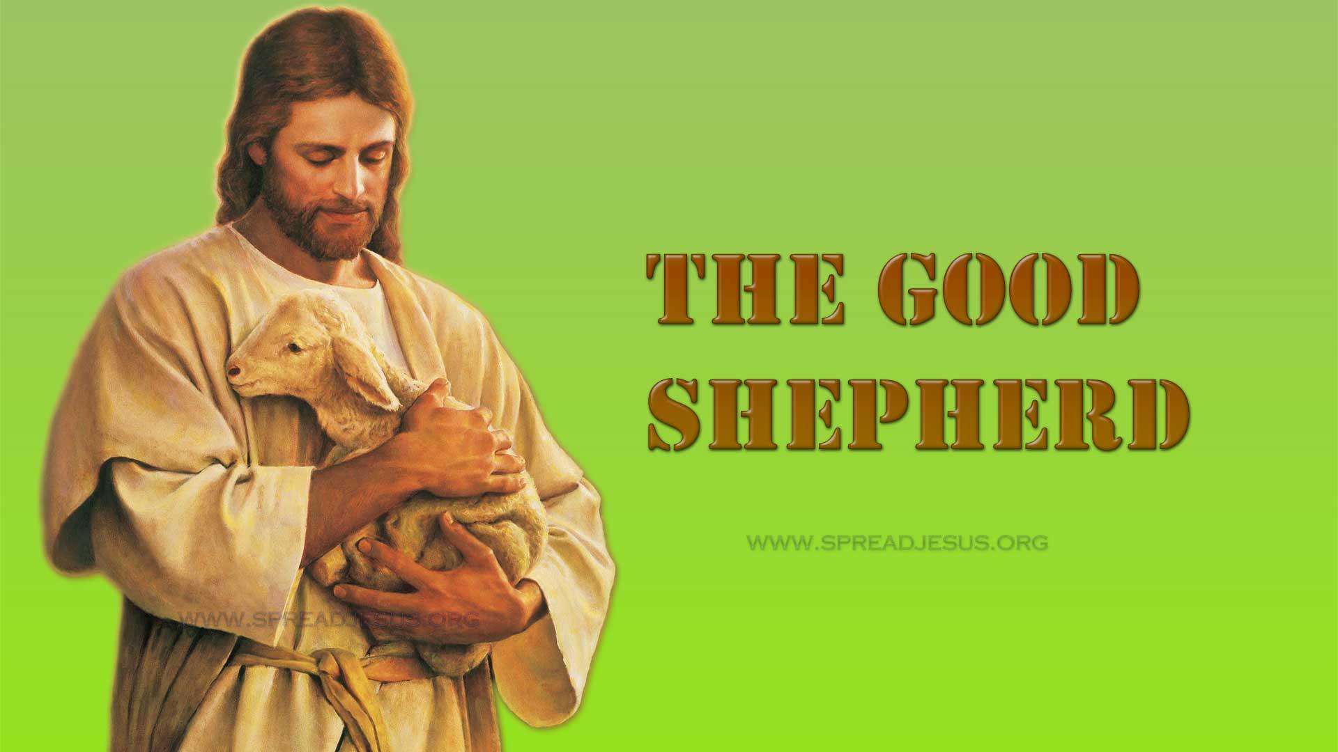 The Good Shepherd3:HD wallpapers