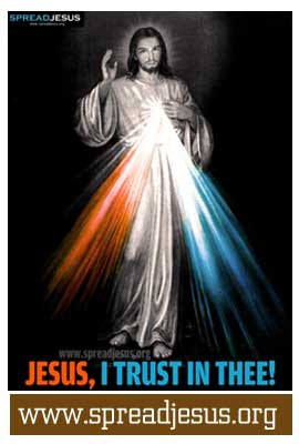 The Divine Mercy Prayers of the Chaplet of The Divine Mercy