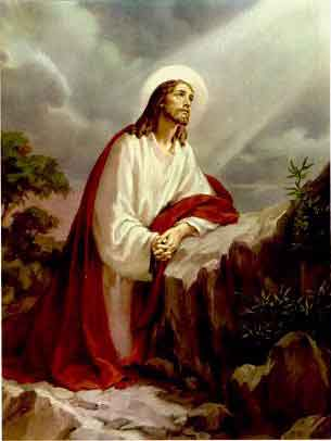 THE HOLY ROSARY The Sorrowful Mysteries (Tuesday and Friday) 1st sorrowful mystery- The Agony of Jesus in the garden