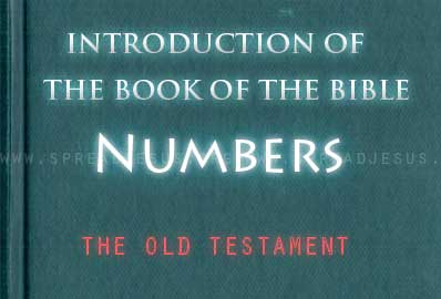 The book Of The Bible Numbers The book of Numbers continues the story of the people of Israel as they journey in the wilderness between Mt. Sinai and the promised land of Canaan.