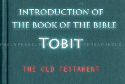 The book Of The Bible Tobit The book of Tobit is more closely related To Jewish wisdom literature than to the historical narrative of the OT. It probably was written in the early second century BCE.